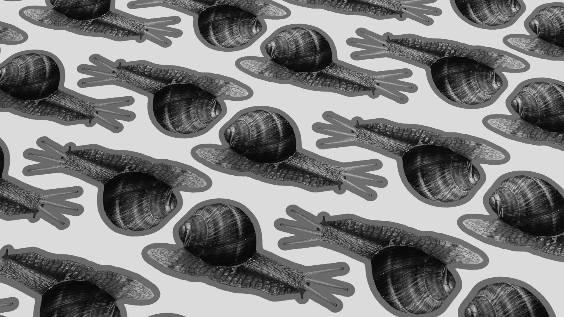 Háromszemű csiga matrica